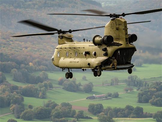 Royal Black Hawk